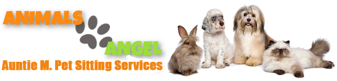 | animals-angel.co.uk | Pet Sitting Service | Angels For Animals | Chesterfield | Sheffield | Dronfield |